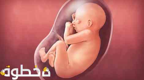 المشاكل المختلفة التي تحدث أثناء الحمل