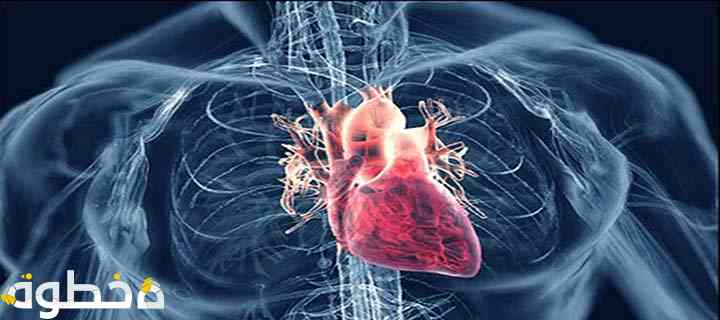 ما هي النوبات القلبية والسكتات الدماغية ؟