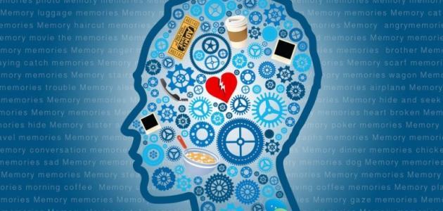 طرق سحرية لتقوية الذاكرة والتغلب على مشكلة النسيان