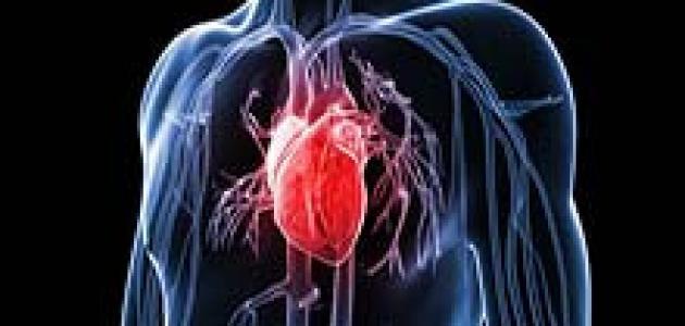 كيف يمكنك حماية نفسك من أمراض القلب والشرايين؟