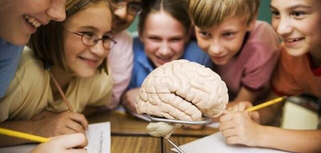 توصيات لنجاح التعليم النشط